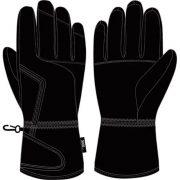 Мъжки ски ръкавици AST (Z97C Y45)